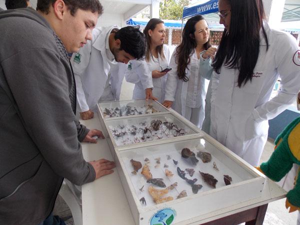 Preocupação com o ambiente aumenta o mercado para o biólogo