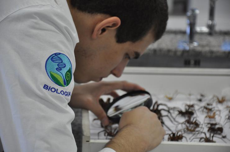 Questões ambientais aumentam portunidades para biólogos