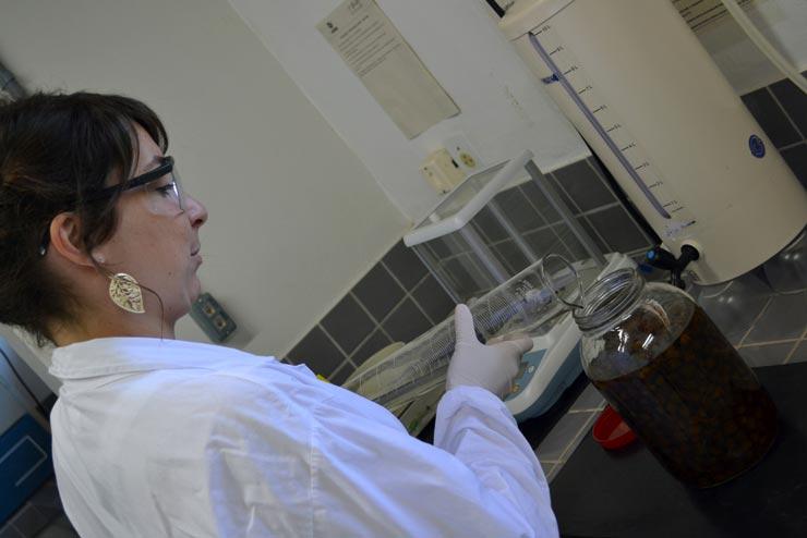 Unesc contrata professor doutor na área de Ciências Humanas